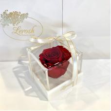 Червоний стабілізований бутон троянди в подарунковій коробці Lerosh - Classic
