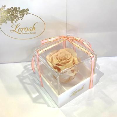 Кремовий стабілізований бутон троянди в подарунковій коробці Lerosh - Classic ORIGINAL