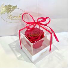 Малиновий стабілізований бутон троянди в подарунковій коробці Lerosh - Classic