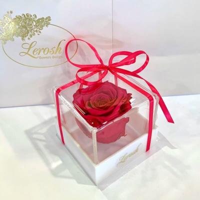 Малиновий стабілізований бутон троянди в подарунковій коробці Lerosh - Classic ORIGINAL