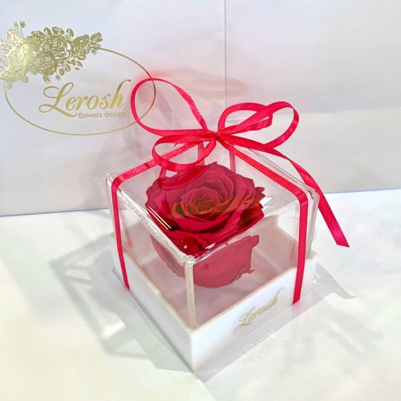 Малиновый стабилизированный бутон розы в подарочной коробке Lerosh - Classic
