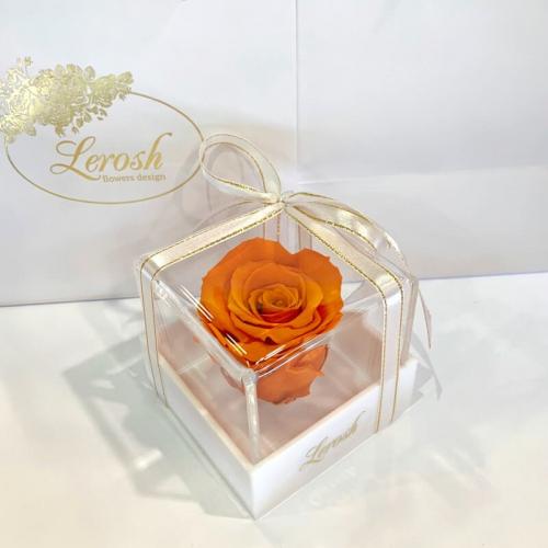 Оранжевый стабилизированный бутон розы в подарочной коробке Lerosh - Classic ORIGINAL
