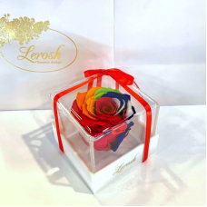 Яскравий Райдужний стабілізований бутон троянди в подарунковій коробці Lerosh - Classic