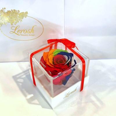 Яркий Радужный стабилизированный бутон розы в подарочной коробке Lerosh - Classic