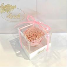 Рожевий стабілізований бутон троянди в подарунковій коробці Lerosh - Classic