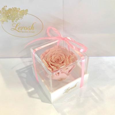 Pink Preserved Rosebud Gift Box Lerosh - Classic