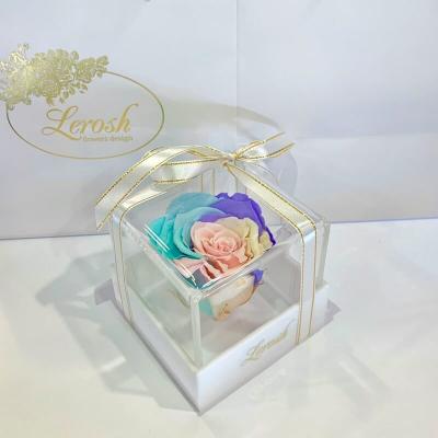 Ніжний райдужний стабілізований бутон троянди в подарунковій коробці Lerosh - Classic ORIGINAL