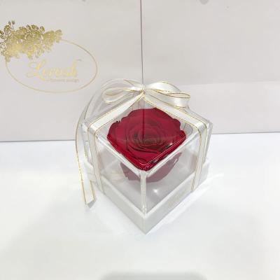 Бордово-малиновий стабілізований бутон троянди в подарунковій коробці Lerosh - Classic