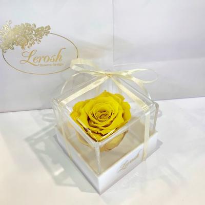 Yellow Preserved Rosebud Gift Box Lerosh - Classic