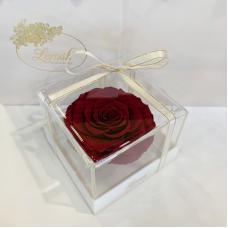 Бордовий стабілізований бутон троянди в подарунковій коробці Lerosh - Premium