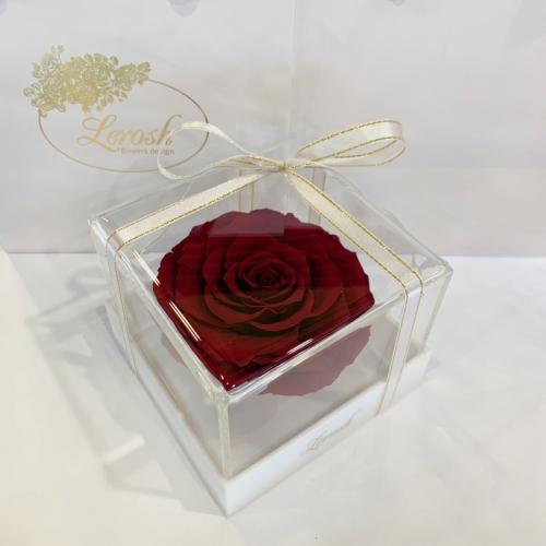 Бордовый стабилизированный бутон розы в подарочной коробке Lerosh - Premium ORIGINAL