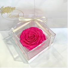 Ярко-розовый стабилизированный бутон розы в подарочной коробке Lerosh - Premium
