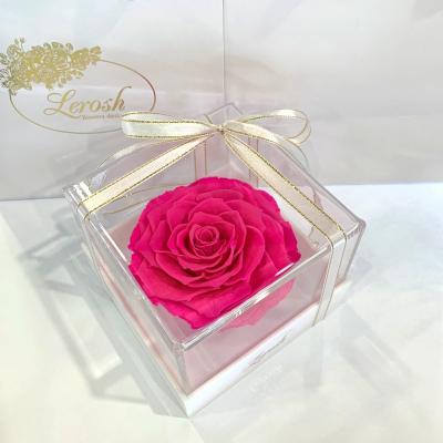 Яскраво-рожевий стабілізований бутон троянди в подарунковій коробці Lerosh - Premium ORIGINAL