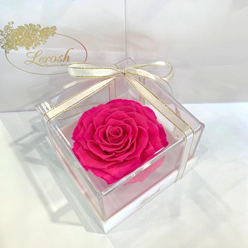 Яскраво-рожевий стабілізований бутон троянди в подарунковій коробці Lerosh - Premium