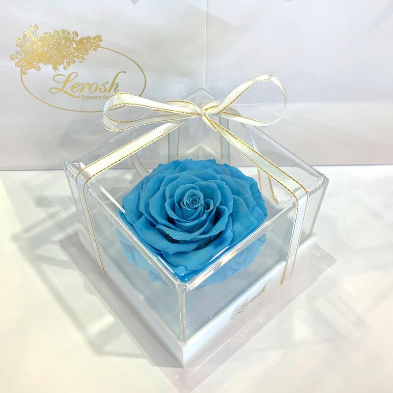 Блакитний стабілізований бутон троянди в подарунковій коробці Lerosh - Premium