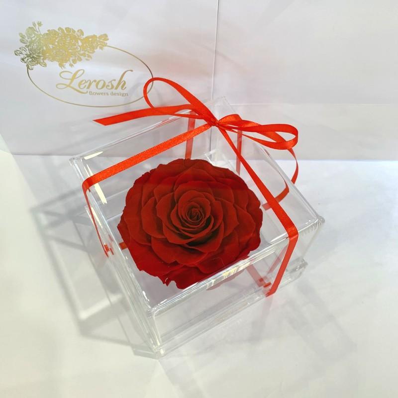 Червоний стабілізований бутон троянди в подарунковій коробці Lerosh - Premium