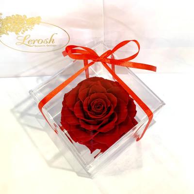 Красный стабилизированный бутон розы в подарочной коробке Lerosh - Premium