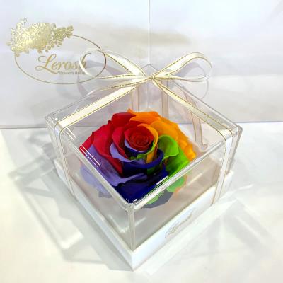 Яскраво-райдужний стабілізований бутон троянди в подарунковій коробці Lerosh - Premium ORIGINAL