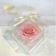 Рожевий стабілізований бутон троянди в подарунковій коробці Lerosh - Premium
