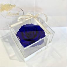 Синий стабилизированный бутон розы в подарочной коробке Lerosh - Premium