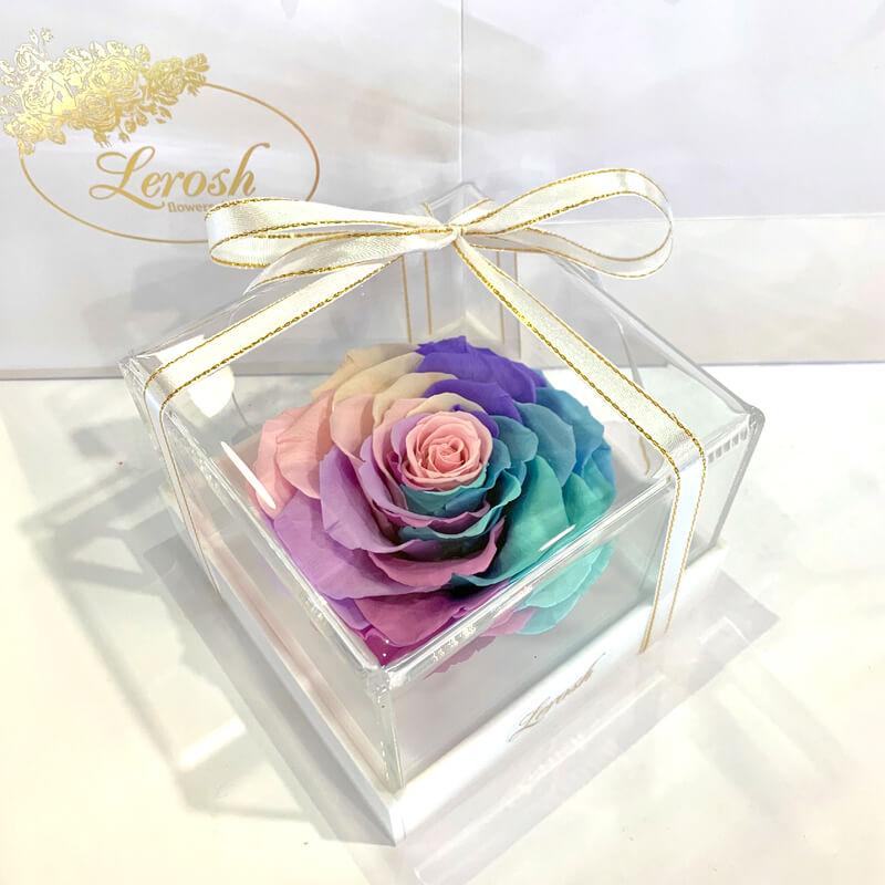 Нежный Радужный стабилизированный бутон розы в подарочной коробке Lerosh - Premium