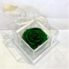 Зелений стабілізований бутон троянди в подарунковій коробці Lerosh - Premium