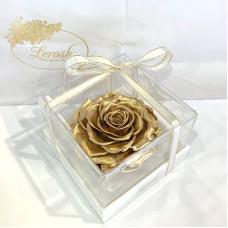 Золотий стабілізований бутон троянди в подарунковій коробці Lerosh - Premium