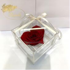 Burgundy Stabilized Rosebud Heart in Lerosh Gift Box - Premium