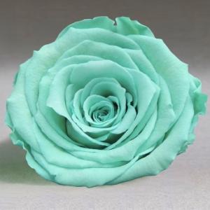 Бирюзовая роза в колбе