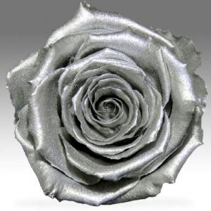 Серебряная роза в колбе
