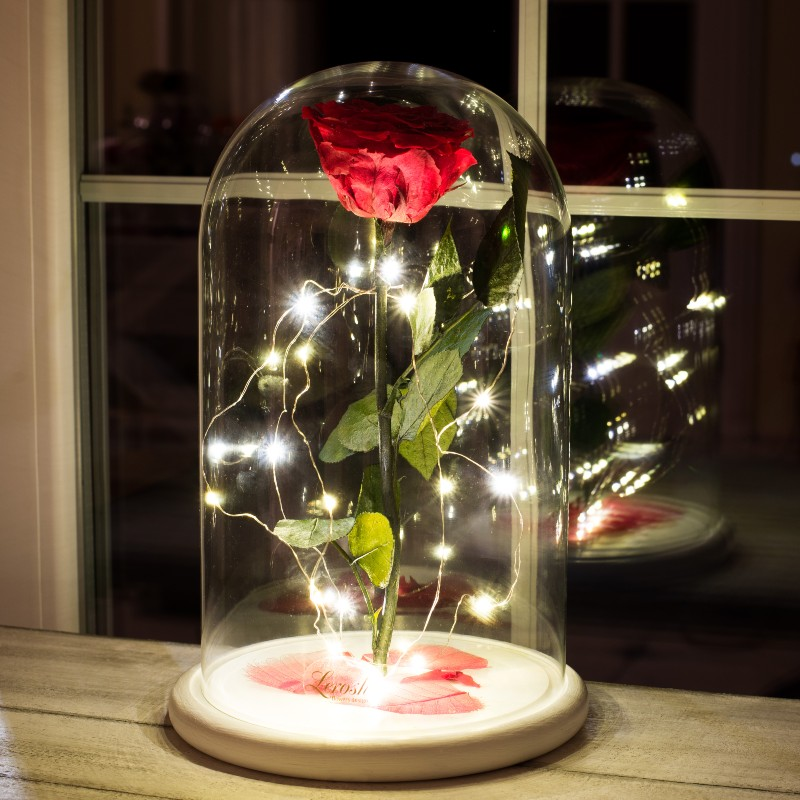 Підсвічування світлодіодне гірлянда нитка крапля роси 5 м для троянди в колбі Lerosh 43 см